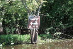 Image of a brown canoe sign on a tree